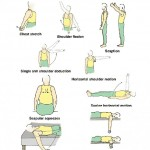 kinesiology-and-active-rehab-on-pinterest-exercise-frozen-