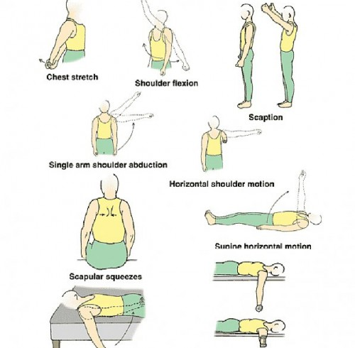 shoulder impingement exercises pdf Archives ...