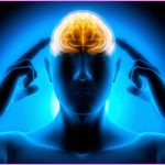 Mental Imagery - The Imaginative Conservative