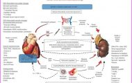 How should anemia be managed in heart failure?_14.jpg