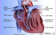What are the most frequent causes of heart failure?_3.jpg