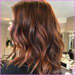 Dark Hair With Copper Highlights_11.jpg