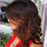 Dark Hair With Copper Highlights_14.jpg