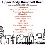 Free Weight Upper Body Exercises_6.jpg