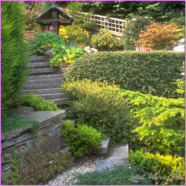 5-best-10-front-garden-design-ideas.jpg