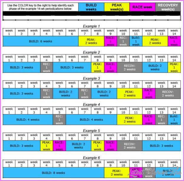 Athlete Workout Plan_2.jpg