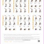 Body Weight Exercises For Women_5.jpg