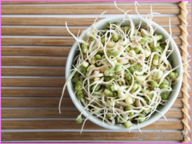ALFALFA SPROUTS And Weight Loss_24.jpg