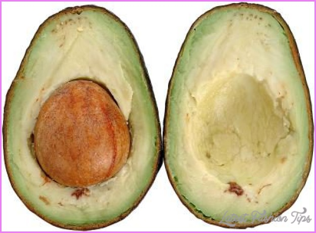 avocado oil weight loss
