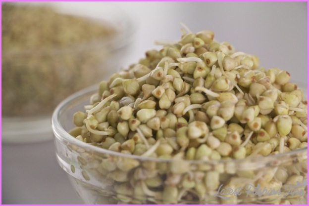 BUCKWHEAT SPROUTS And Weight Loss_8.jpg
