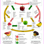 FOOD COMBINING INFORMATION FOR WEIGHT LOSS_21.jpg