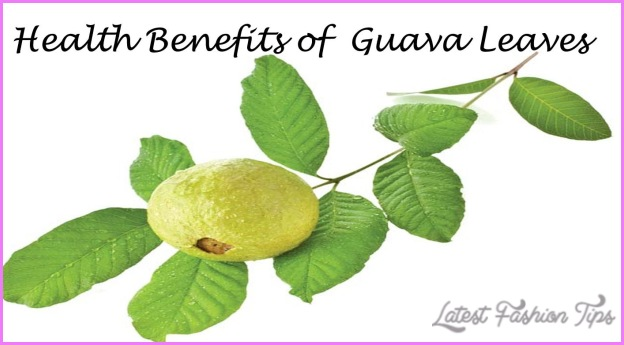 GUAVA  Will Help To Weight Loss_29.jpg