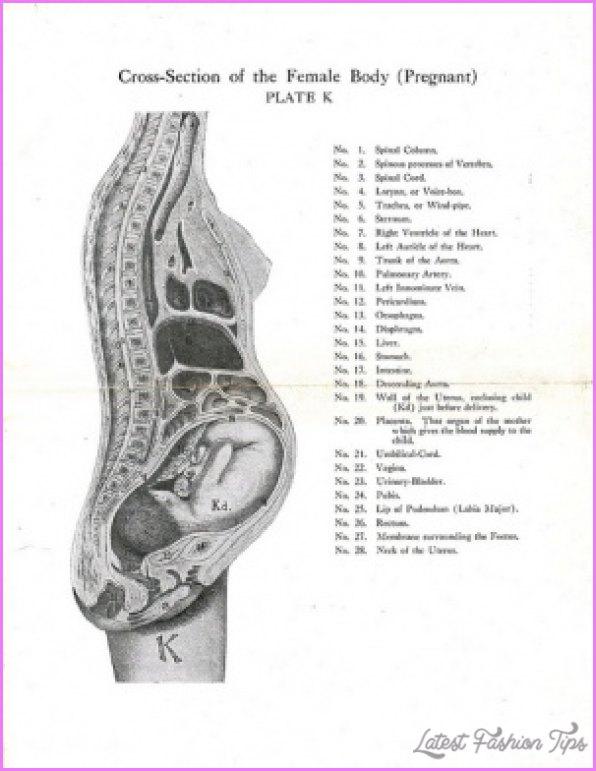 Pelvic Girdle Pain Pregnancy Exercises_3.jpg