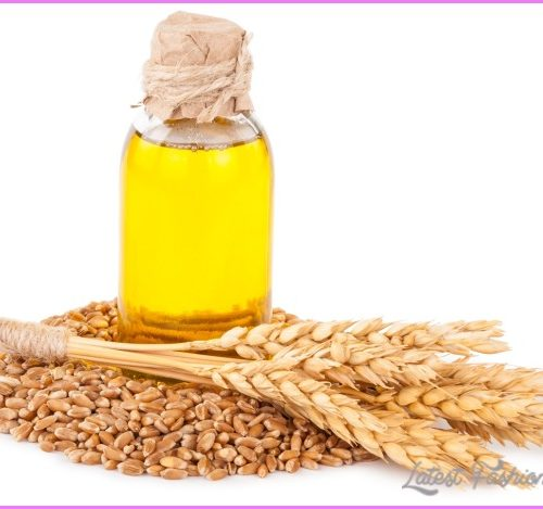 WHEATGERM OIL For Weight Loss_3.jpg