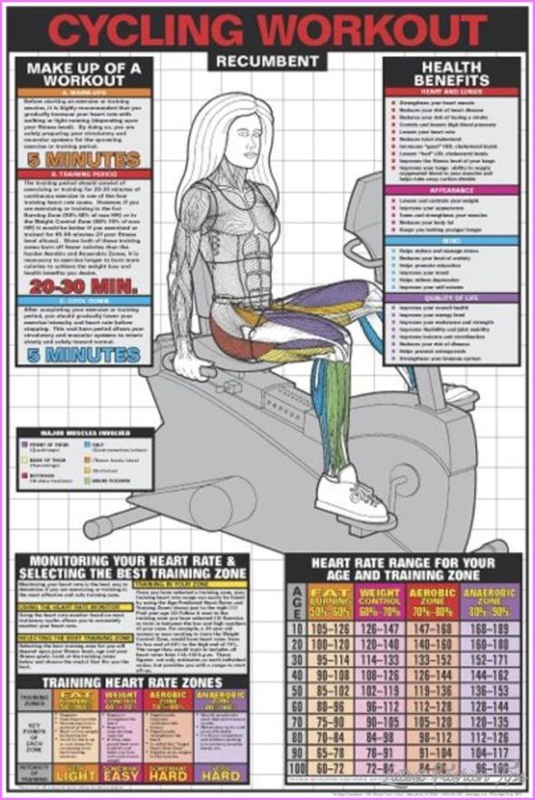 10 Exercise Bike Or Cross Trainer For Weight Loss _12.jpg