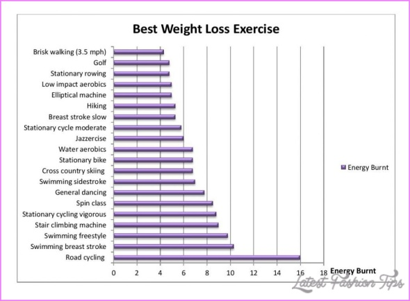 Low Impact Exercises For Weight Loss _2.jpg