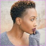 Short Hairstyles Black Hair_14.jpg