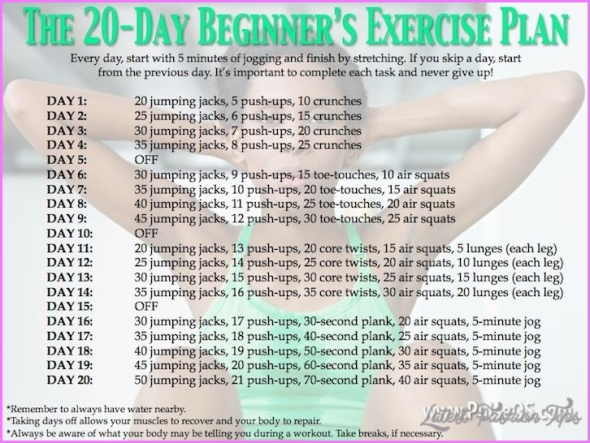 Weight Loss Exercise Routine For Beginners _4.jpg