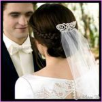 Bella Swans Wedding Hair from Breaking Dawn_1.jpg
