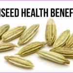 Aniseed-Health-Benefits.jpg