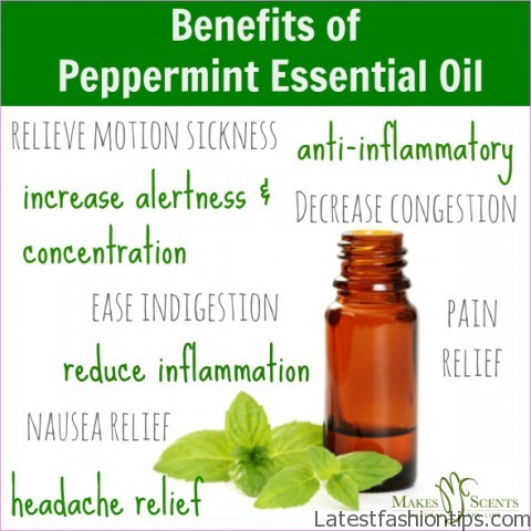 Benefits-of-Peppermint-Essential-Oil.jpg