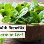 benefits-of-peppermint-leaf-fb.jpg