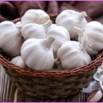 Garlic Benefits & Information_13.jpg