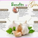 Garlic Benefits & Information_14.jpg