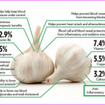 Garlic Benefits & Information_4.jpg