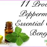 hdr-11-Proven-Peppermint-Essential-Oil-Benefits.jpg