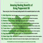 Healing-Benefits-of-Using-Peppermint-Oil.jpg