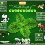 health-benefits-of-peppermi.jpg