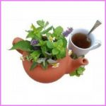 herbal-tea-gardening-fb.jpg