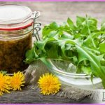 herbs-what-is-fermentation-5705-1.jpg