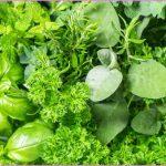 herbs_1050x600.jpg?la=en&hash=8B7CF656405714AF29F33DD7611ECC33D1A0CF4E