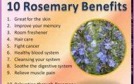 Rosemary Benefits & Information_0.jpg
