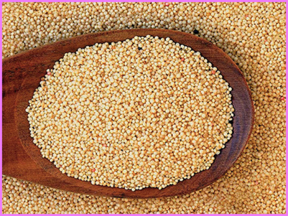 Benefits Of: ANDEAN AMARANTH, KIWICHA_0.jpg