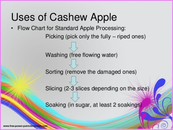 Benefits Of: CASHEW APPLE_11.jpg
