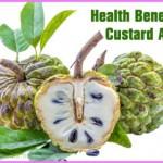 Benefits Of: CUSTARD APPLE_7.jpg