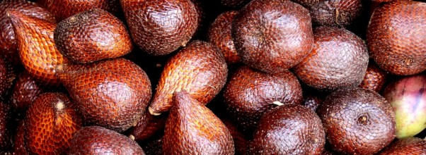 Benefits Of RED SALAK (4)