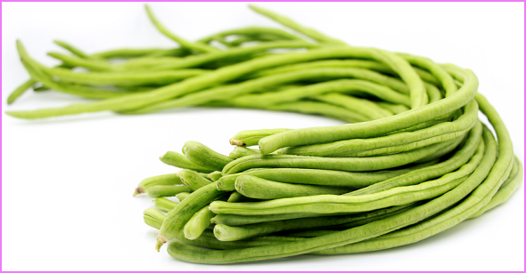 Benefits Of: YARDLONG BEAN SNAKE BEAN_6.jpg