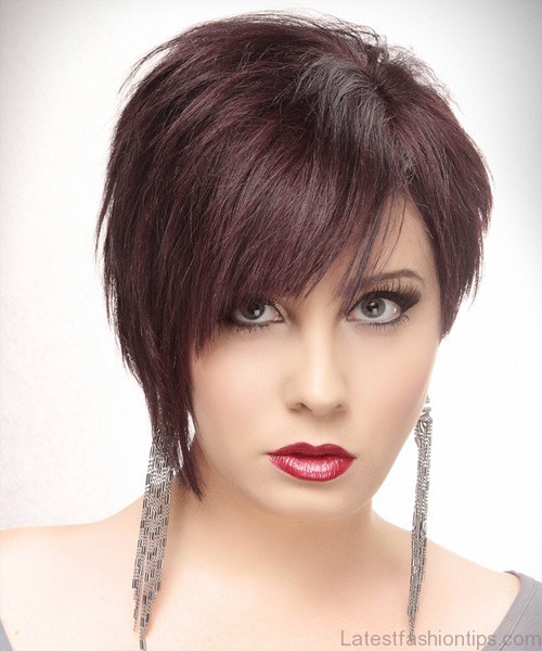 Short Straight Asymmetrical Hairstyle - Dark Plum Red Hair Color