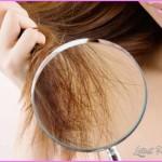 Protect & Repair Dry Damage Hair From Chlorine